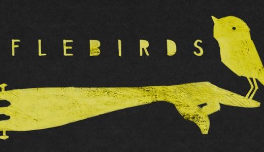 Riflebirds logo